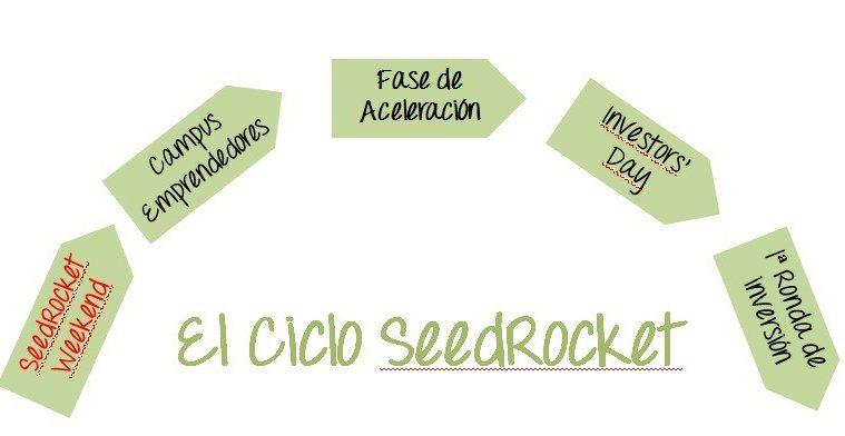 seedrocket_ciclo