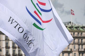 La OMC prolonga la no imposición de derechos de aduana en eCommerce