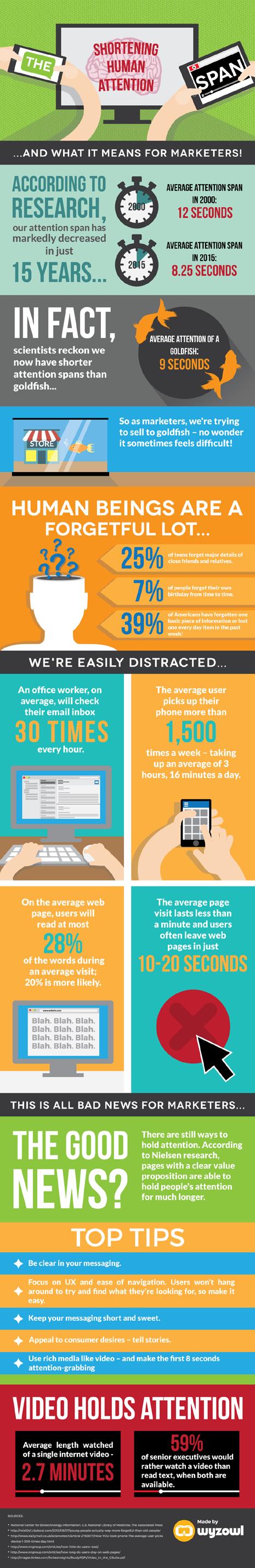 Capacidad de atención de los internautas - Infografía