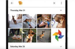 busquedas emojis Google Photos