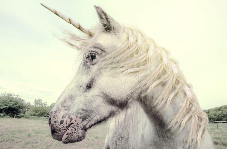 Valoración de la startups unicornio.