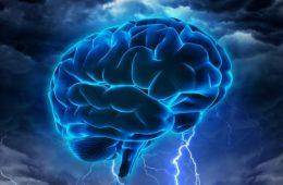 neurociencia neuromarketing