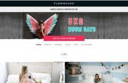 Flamingueo: opiniones, análisis y valoración