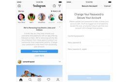 Los usuarios falsos en Instagram, en el punto de mira: prepárate para perder seguidores