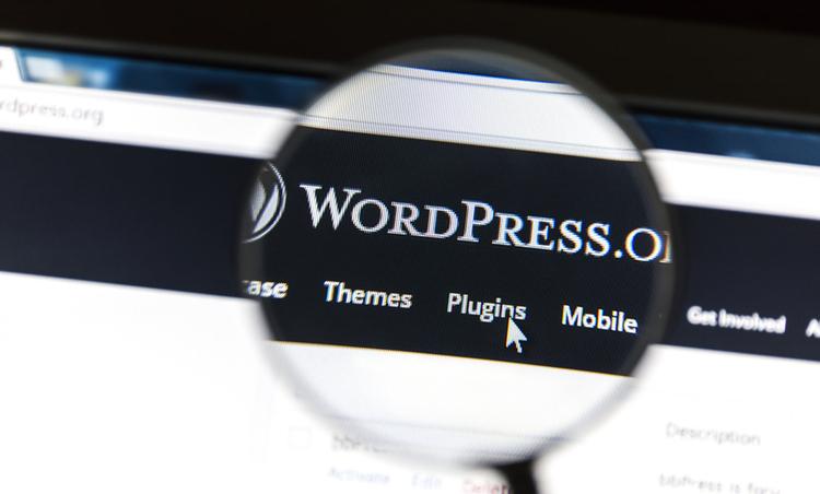 wordpress-seo