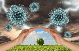 Impacto del coronavirus en las startups españolas: así lo viven desde dentro