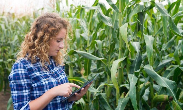 Zonas rurales y tecnologia